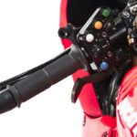 ducati-1199-panigale-r-world-superbike-2018-12