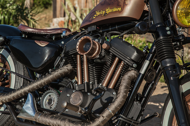 harley-davidson-forty-eight-rusty-rio-2018-2