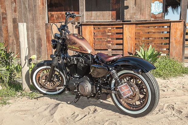harley-davidson-forty-eight-rusty-rio-2018-3